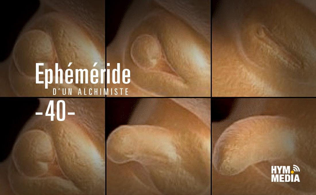 Ephemeride-40-19-25-decembre