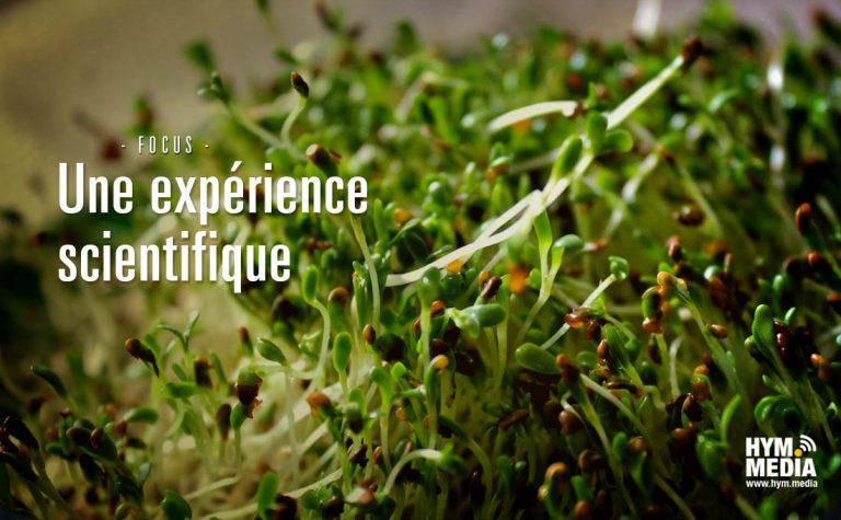 Focus-experience-scientifique2
