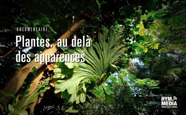 SeancesPrenantes-Docu-plantescommuniquantes